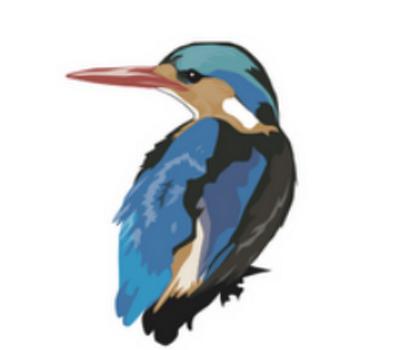 How To Use RealBird @Realbird #WebToolsWiki